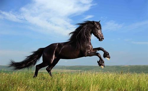 奔出一匹黑马:成都成为区块链产业新热土